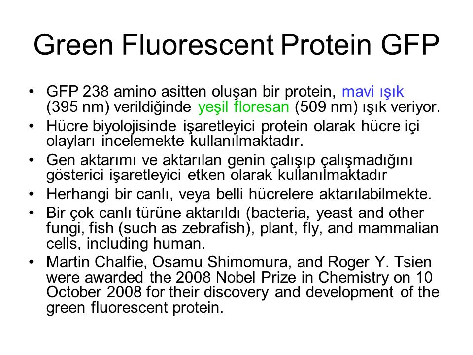 Green Fluorescent Protein GFP