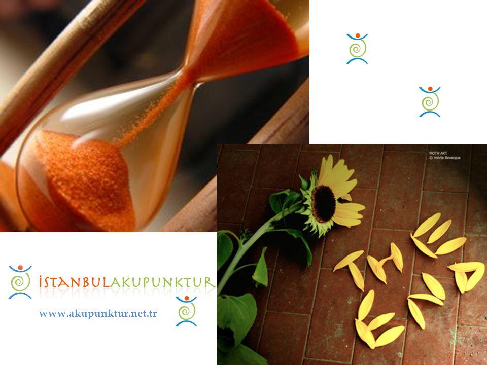 www.akupunktur.net.tr