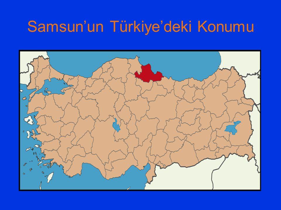 Samsun'un Türkiye'deki Konumu