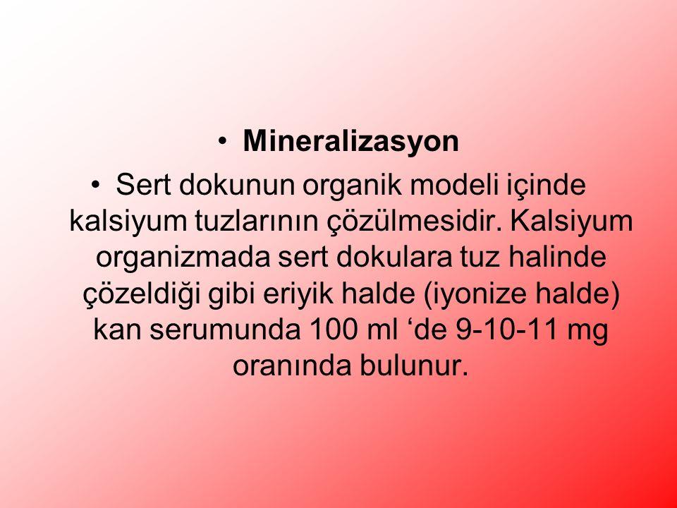 Mineralizasyon