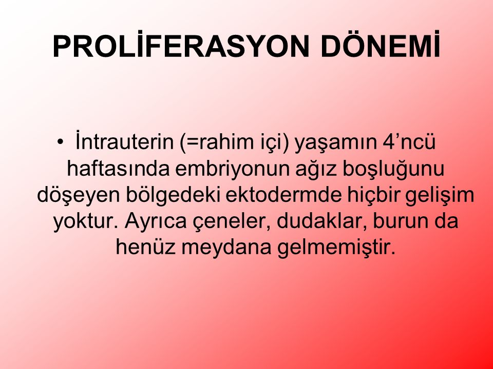 PROLİFERASYON DÖNEMİ