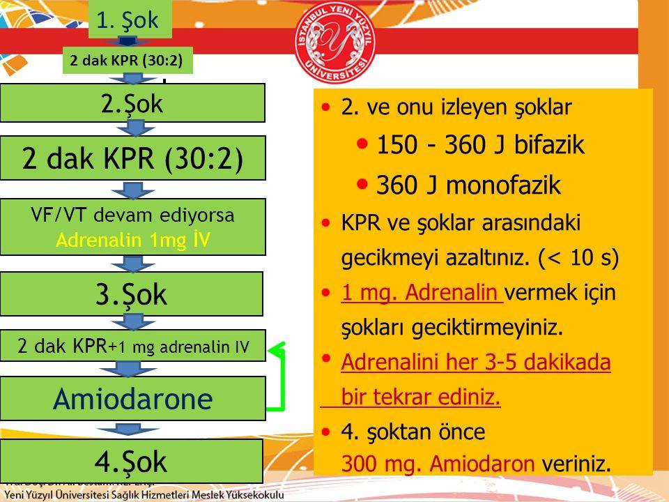2 dak KPR+1 mg adrenalin IV