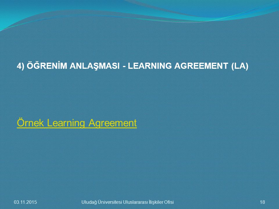Örnek Learning Agreement