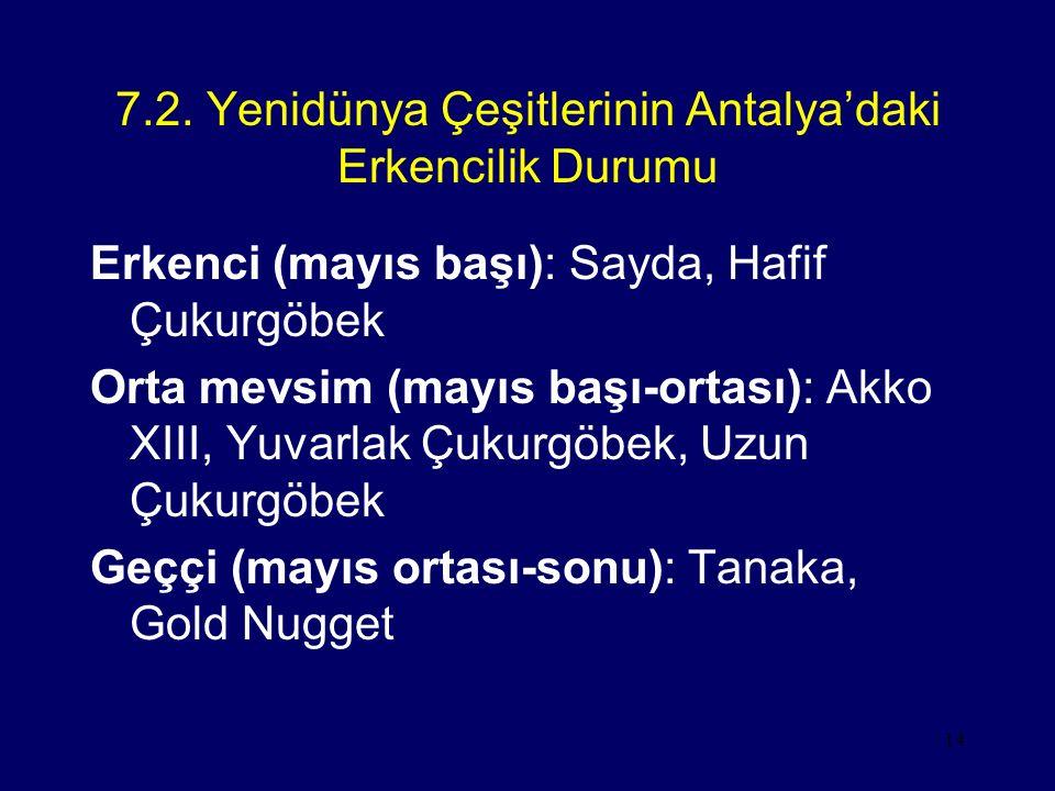 7.2. Yenidünya Çeşitlerinin Antalya'daki Erkencilik Durumu