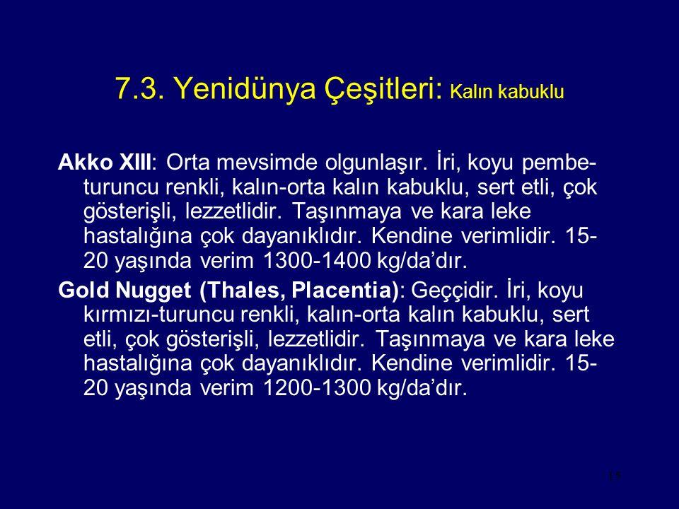 7.3. Yenidünya Çeşitleri: Kalın kabuklu