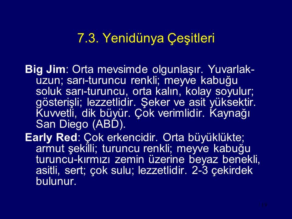 7.3. Yenidünya Çeşitleri