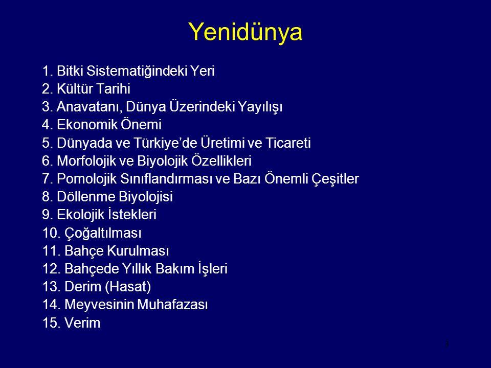 Yenidünya 1. Bitki Sistematiğindeki Yeri 2. Kültür Tarihi