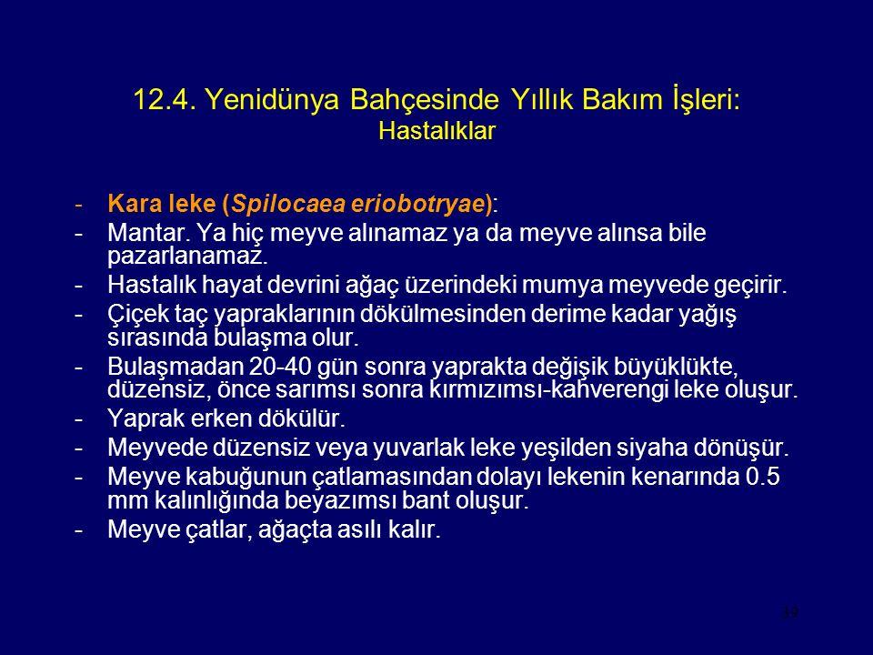 12.4. Yenidünya Bahçesinde Yıllık Bakım İşleri: Hastalıklar