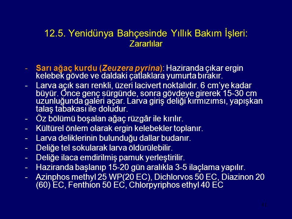 12.5. Yenidünya Bahçesinde Yıllık Bakım İşleri: Zararlılar