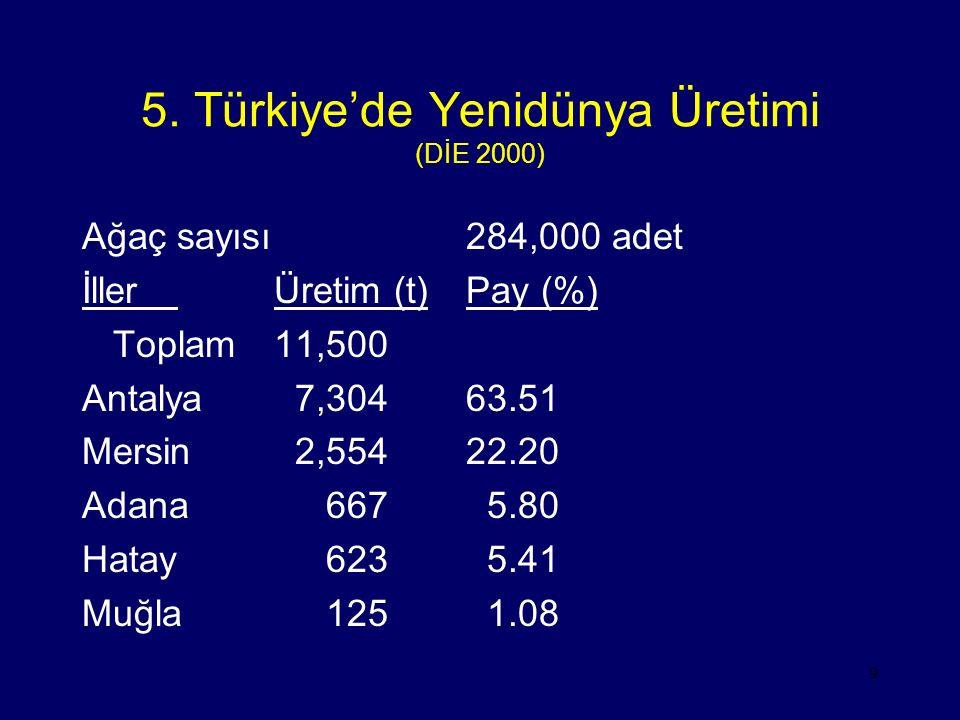 5. Türkiye'de Yenidünya Üretimi (DİE 2000)