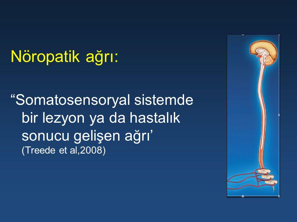 Nöropatik ağrı: Somatosensoryal sistemde bir lezyon ya da hastalık sonucu gelişen ağrı' (Treede et al,2008)