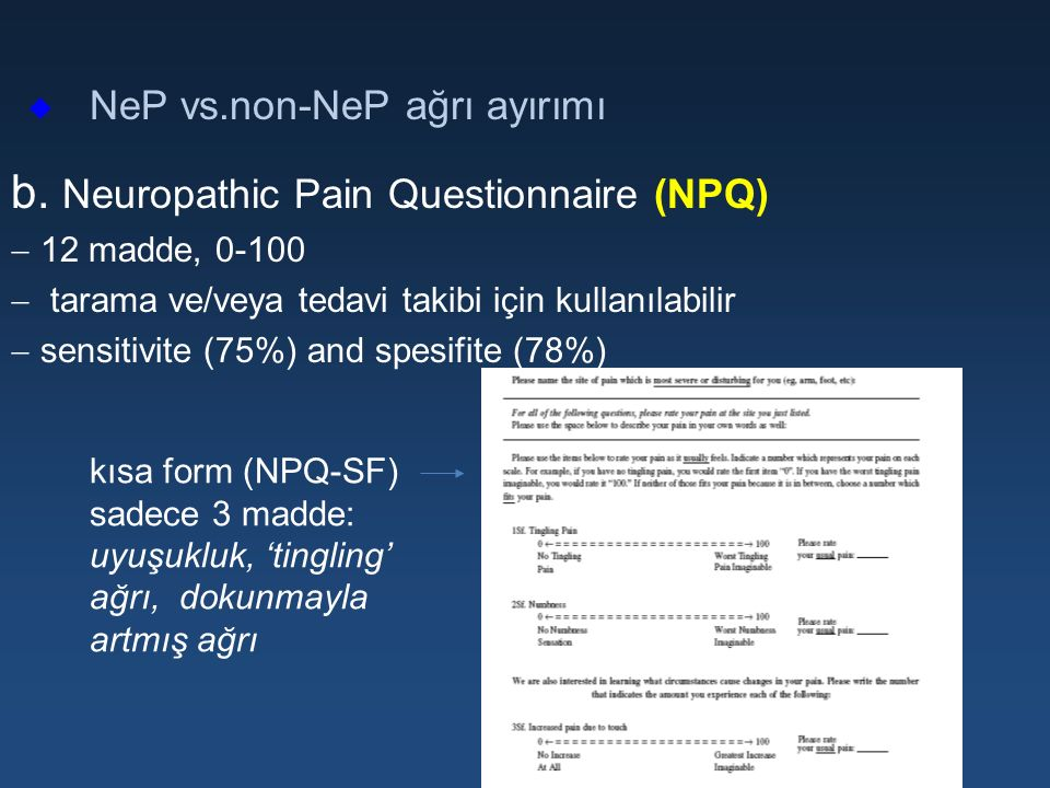 b. Neuropathic Pain Questionnaire (NPQ)