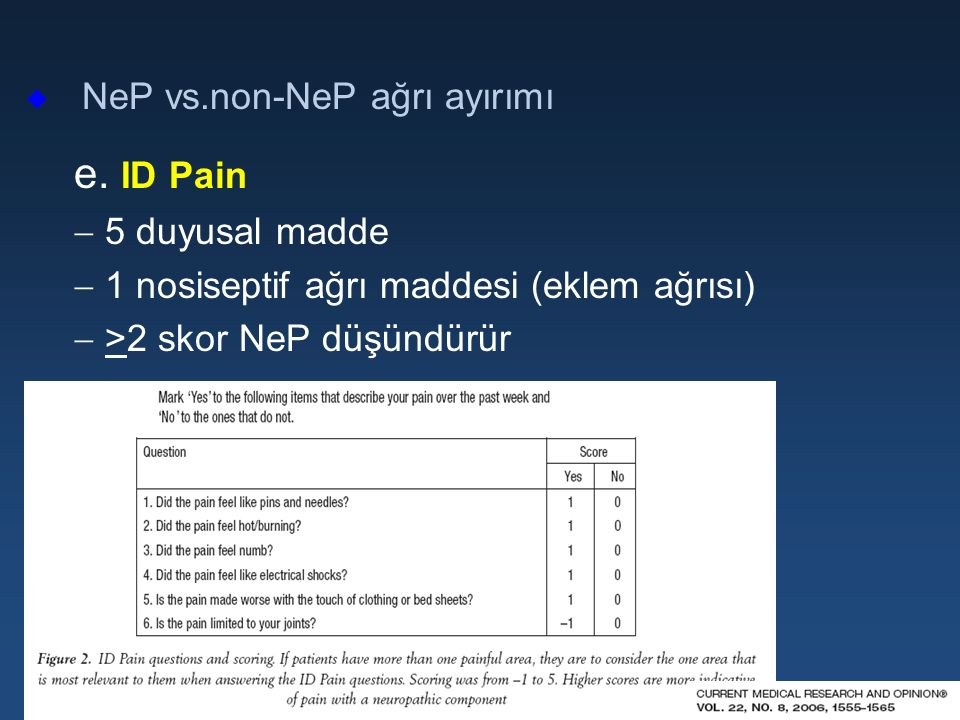 e. ID Pain NeP vs.non-NeP ağrı ayırımı 5 duyusal madde