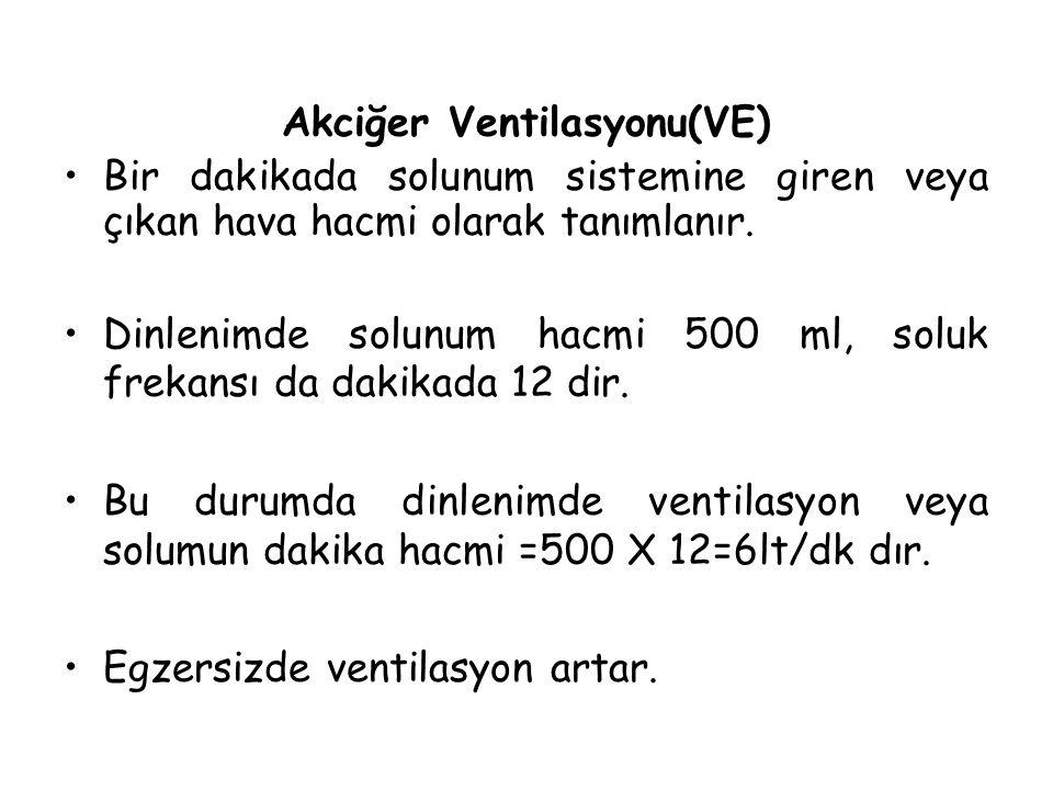 Akciğer Ventilasyonu(VE)