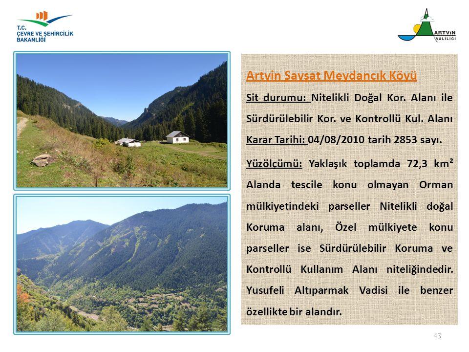 Artvin Şavşat Meydancık Köyü