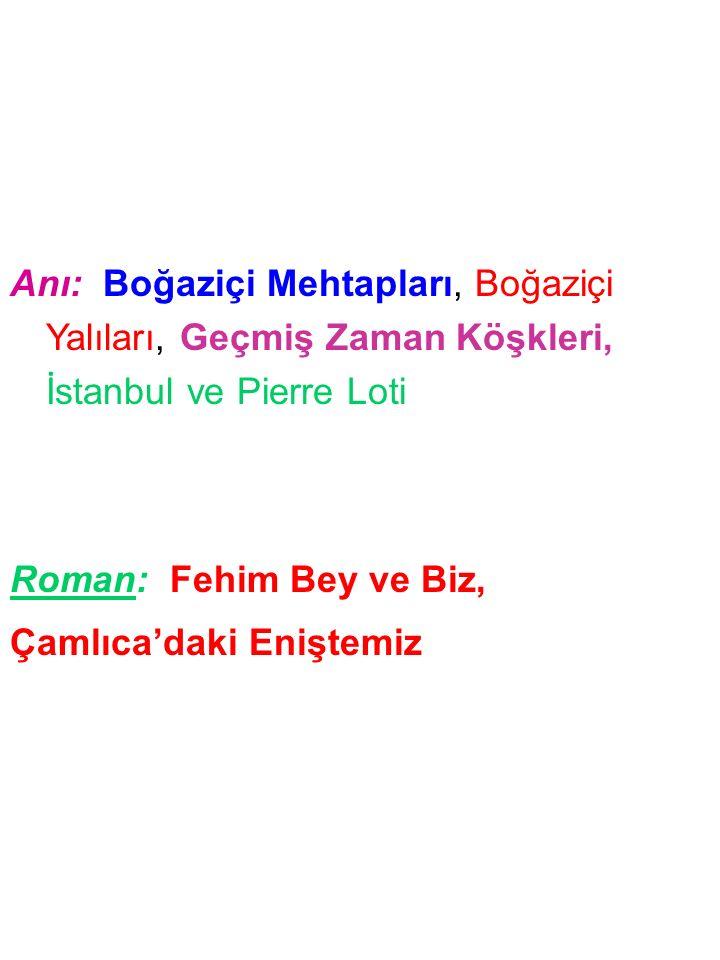 Anı: Boğaziçi Mehtapları, Boğaziçi Yalıları, Geçmiş Zaman Köşkleri, İstanbul ve Pierre Loti