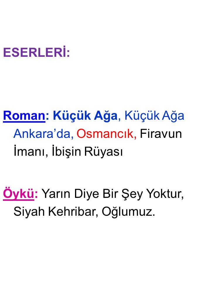 ESERLERİ: Roman: Küçük Ağa, Küçük Ağa Ankara'da, Osmancık, Firavun İmanı, İbişin Rüyası Öykü: Yarın Diye Bir Şey Yoktur, Siyah Kehribar, Oğlumuz.