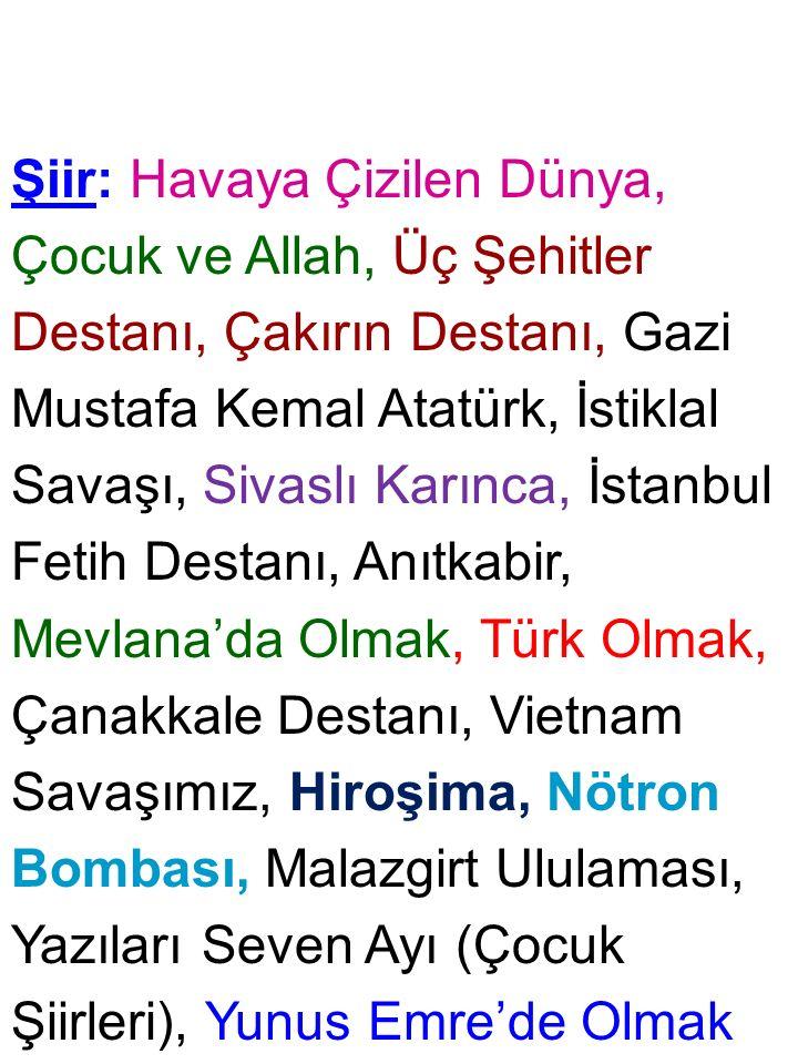 Şiir: Havaya Çizilen Dünya, Çocuk ve Allah, Üç Şehitler Destanı, Çakırın Destanı, Gazi Mustafa Kemal Atatürk, İstiklal Savaşı, Sivaslı Karınca, İstanbul Fetih Destanı, Anıtkabir, Mevlana'da Olmak, Türk Olmak, Çanakkale Destanı, Vietnam Savaşımız, Hiroşima, Nötron Bombası, Malazgirt Ululaması, Yazıları Seven Ayı (Çocuk Şiirleri), Yunus Emre'de Olmak
