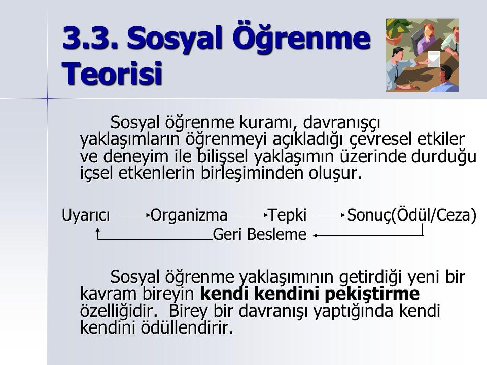 3.3. Sosyal Öğrenme Teorisi