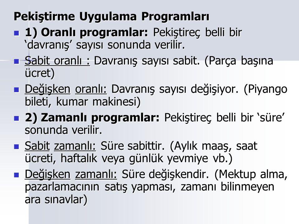 Pekiştirme Uygulama Programları