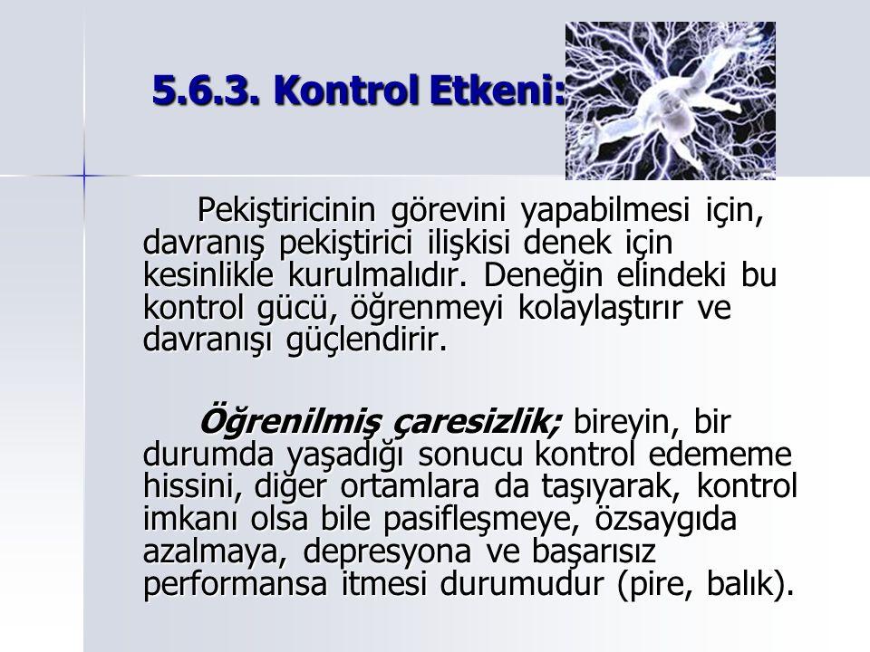 5.6.3. Kontrol Etkeni:
