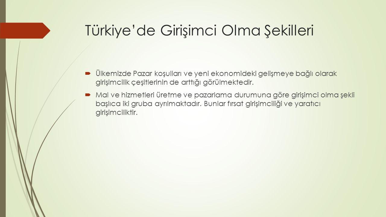 Türkiye'de Girişimci Olma Şekilleri