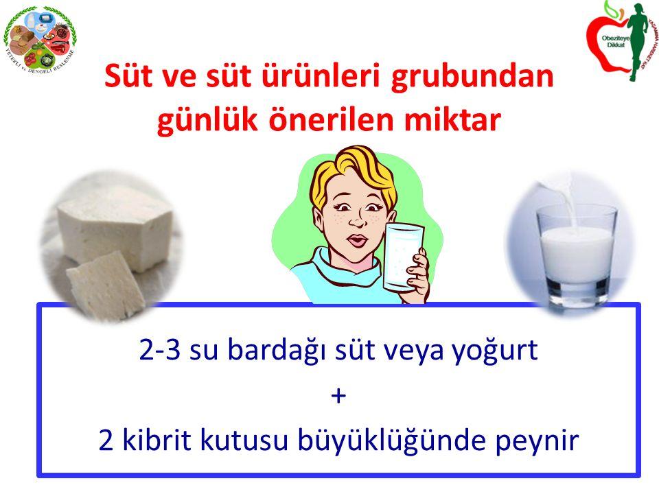 Süt ve süt ürünleri grubundan günlük önerilen miktar