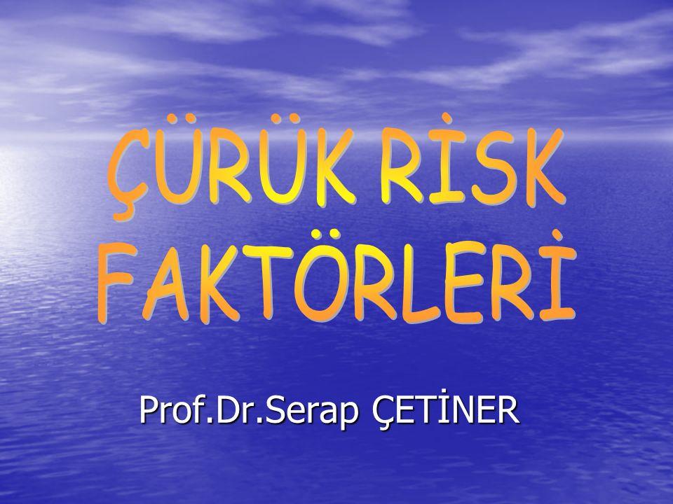 ÇÜRÜK RİSK FAKTÖRLERİ Prof.Dr.Serap ÇETİNER