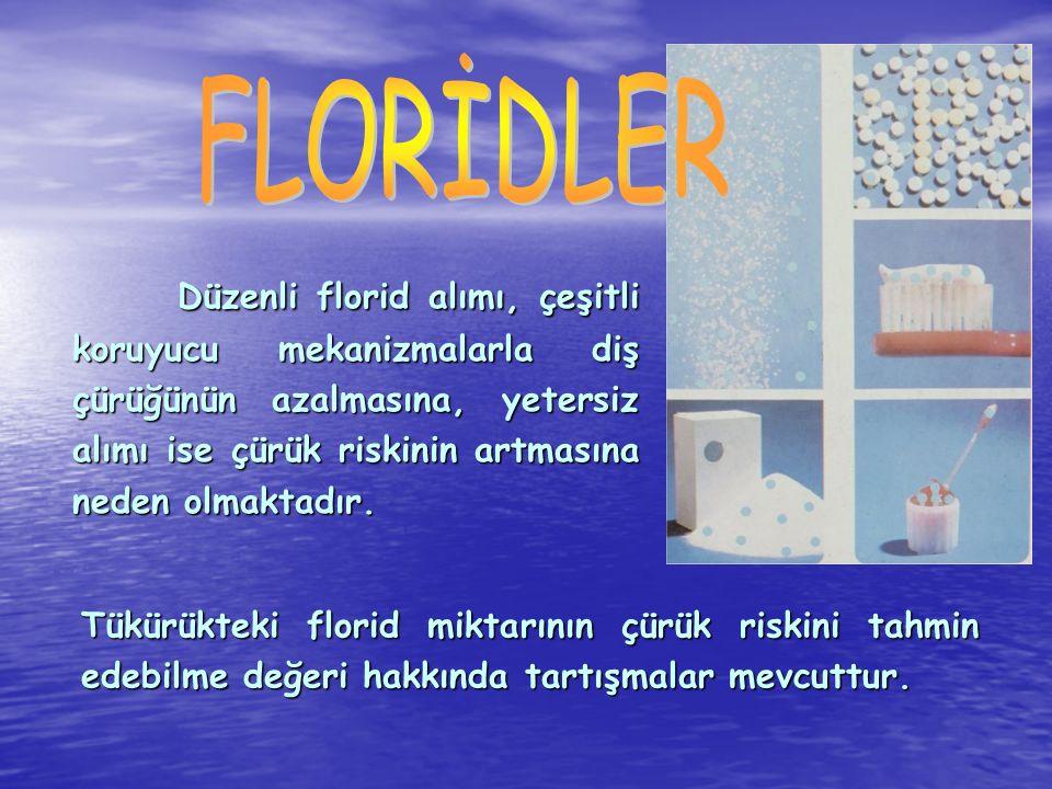 FLORİDLER