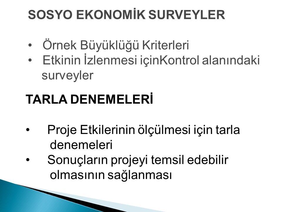 SOSYO EKONOMİK SURVEYLER