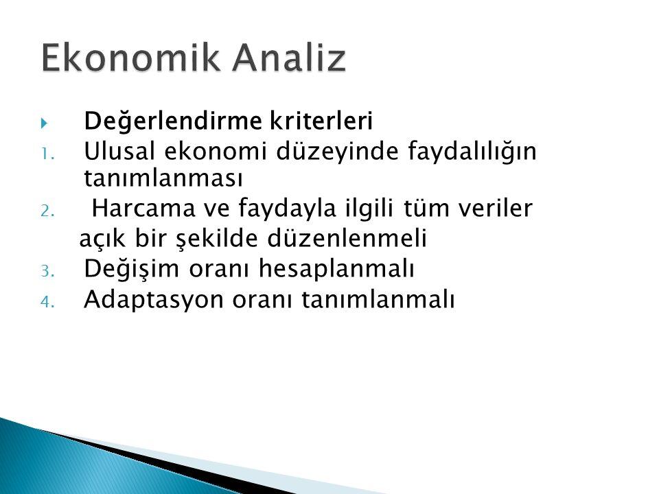 Ekonomik Analiz Değerlendirme kriterleri