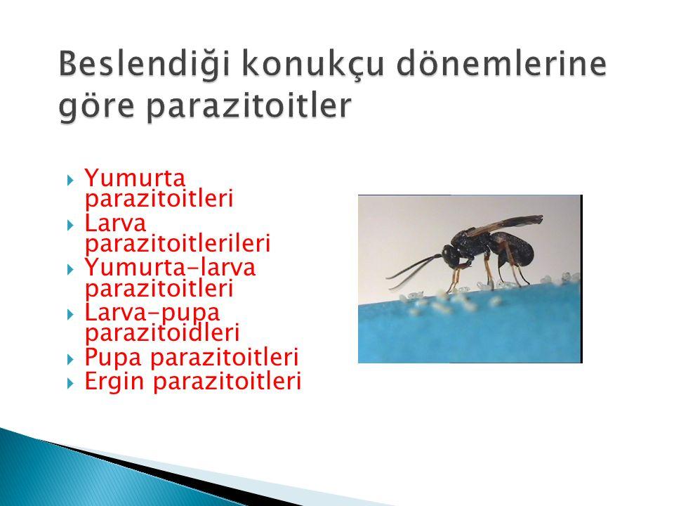 Beslendiği konukçu dönemlerine göre parazitoitler