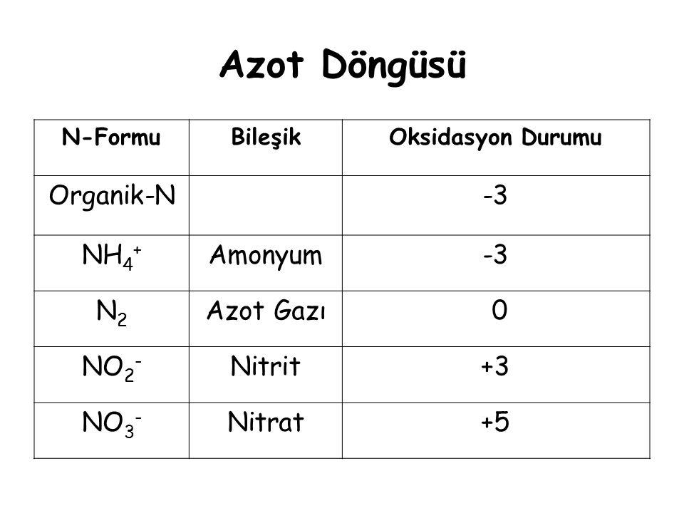 Azot Döngüsü Organik-N -3 NH4+ Amonyum N2 Azot Gazı NO2- Nitrit +3