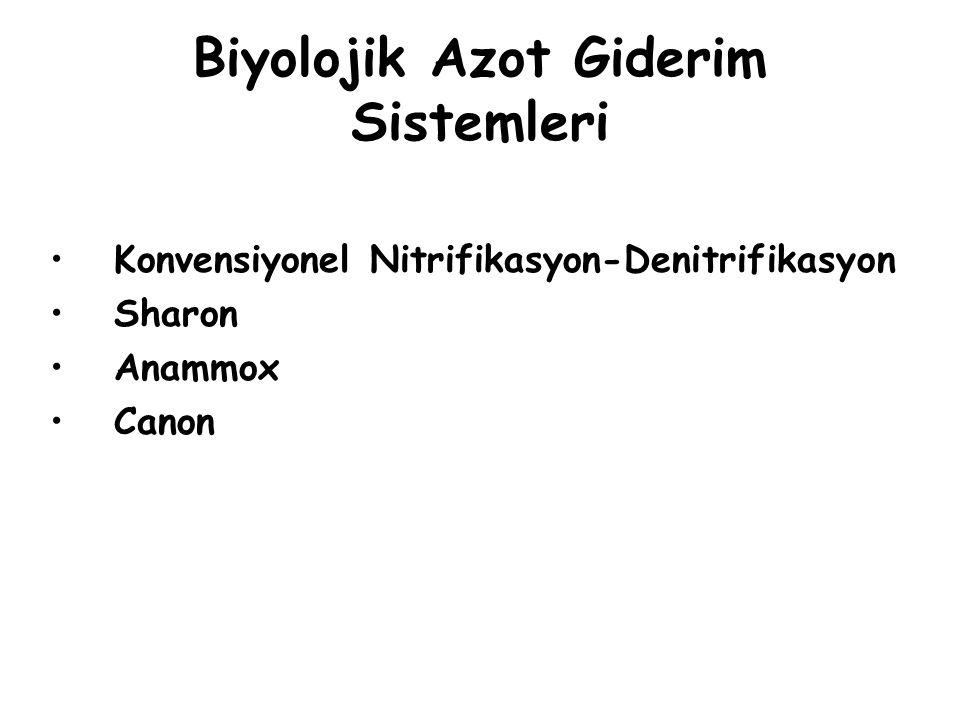 Biyolojik Azot Giderim Sistemleri