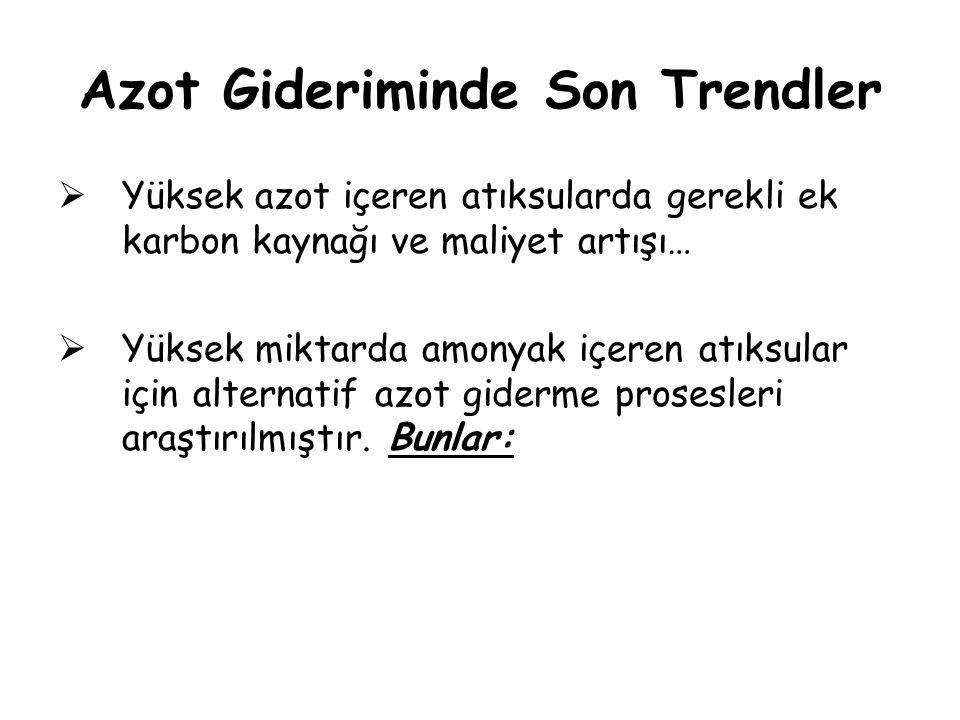 Azot Gideriminde Son Trendler