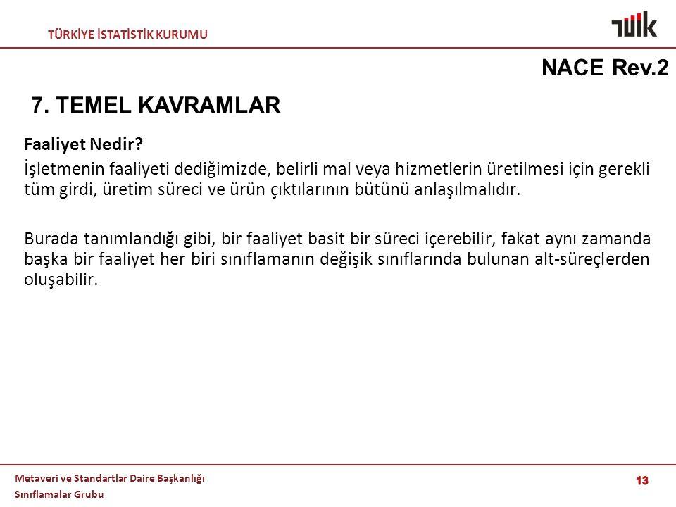 NACE Rev.2 7. TEMEL KAVRAMLAR