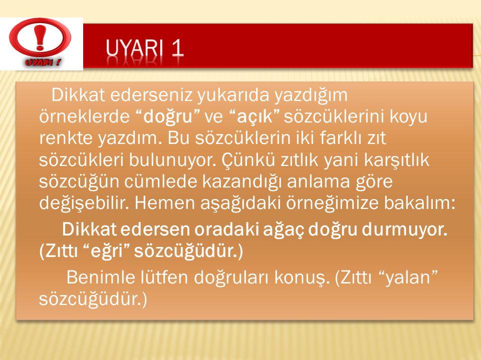 UYARI 1