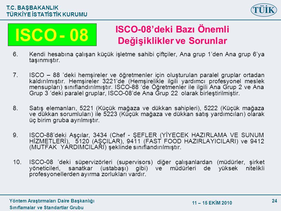 ISCO-08'deki Bazı Önemli Değişiklikler ve Sorunlar