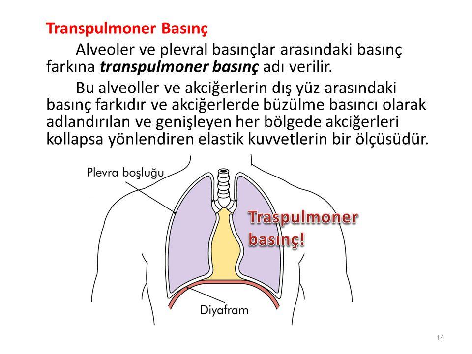 Transpulmoner Basınç Alveoler ve plevral basınçlar arasındaki basınç farkına transpulmoner basınç adı verilir. Bu alveoller ve akciğerlerin dış yüz arasındaki basınç farkıdır ve akciğerlerde büzülme basıncı olarak adlandırılan ve genişleyen her bölgede akciğerleri kollapsa yönlendiren elastik kuvvetlerin bir ölçüsüdür.