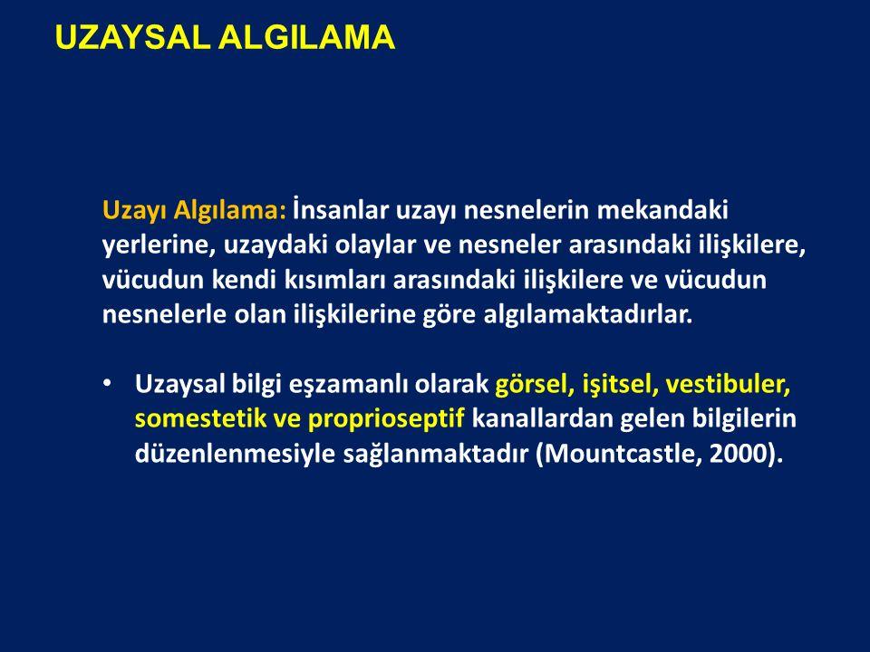 UZAYSAL ALGILAMA