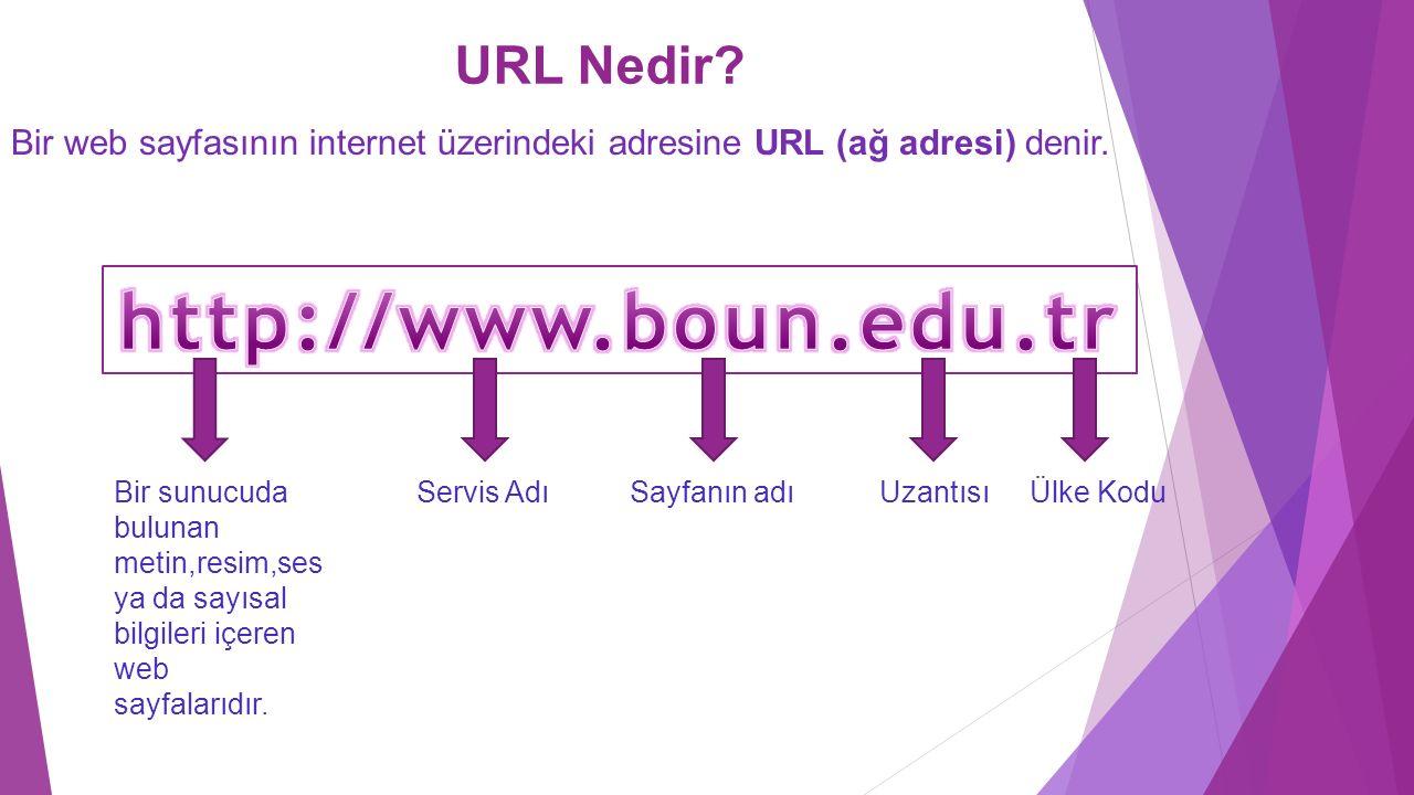 http://www.boun.edu.tr URL Nedir