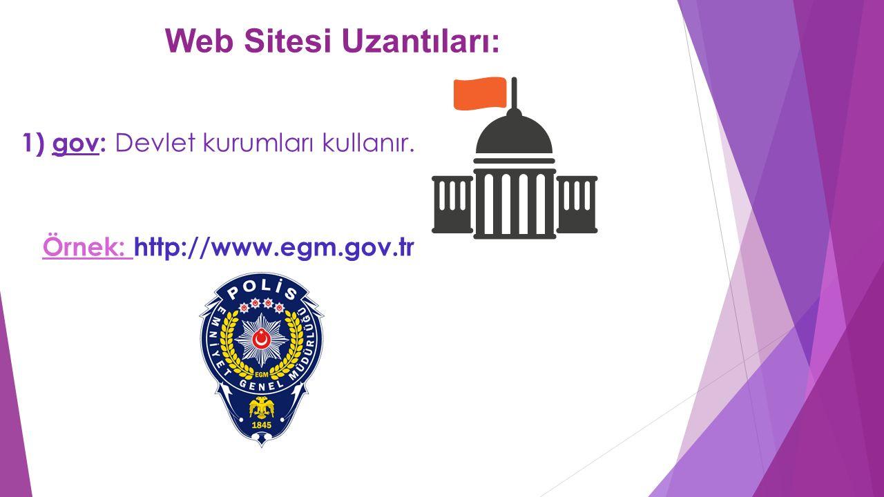 Web Sitesi Uzantıları: