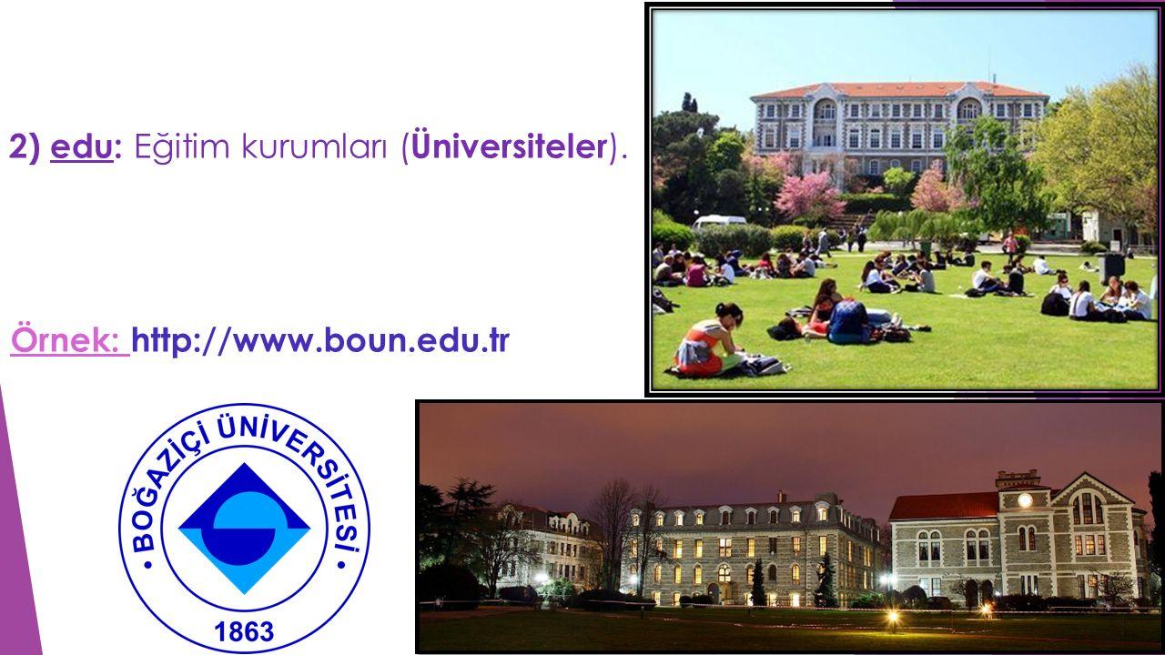 2) edu: Eğitim kurumları (Üniversiteler).