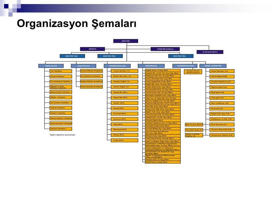 Organizasyon Şemaları