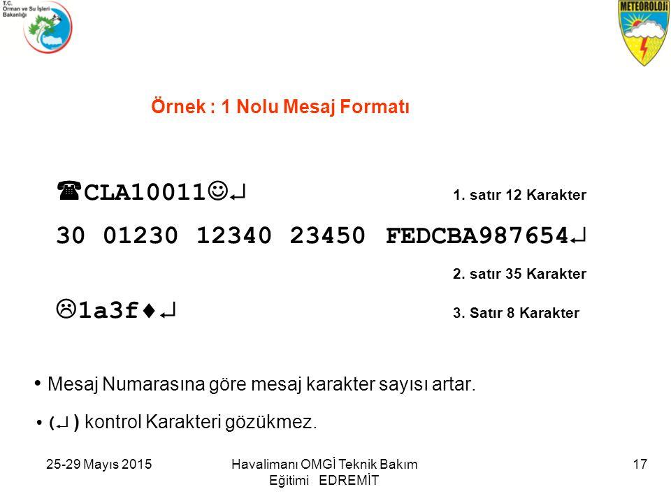 Örnek : 1 Nolu Mesaj Formatı