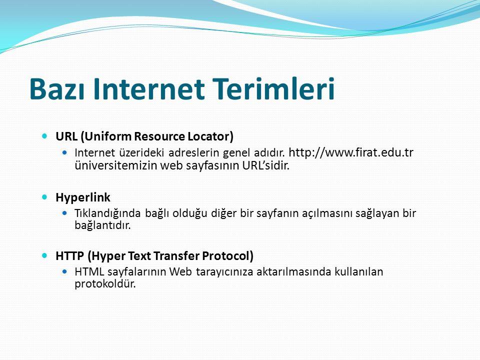 Bazı Internet Terimleri