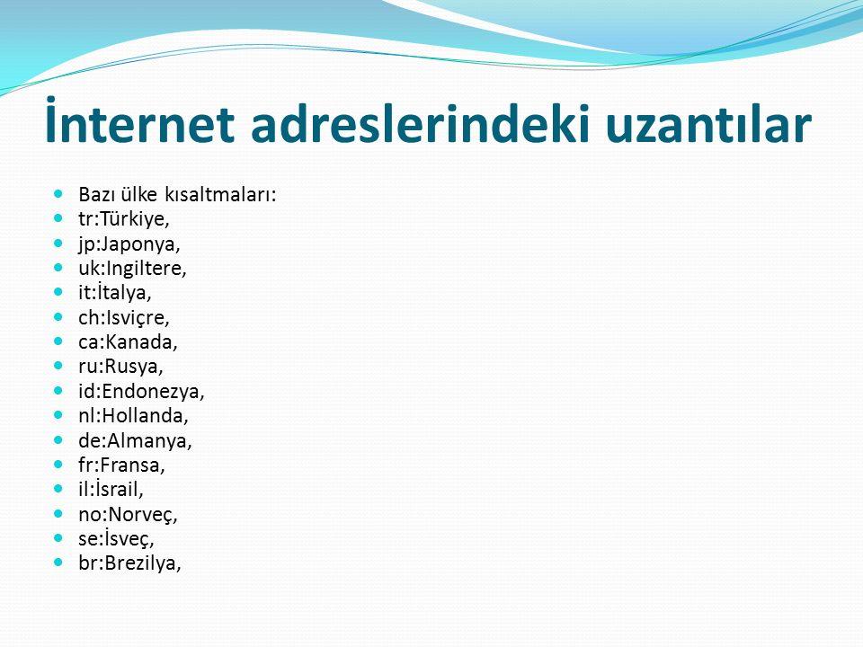 İnternet adreslerindeki uzantılar