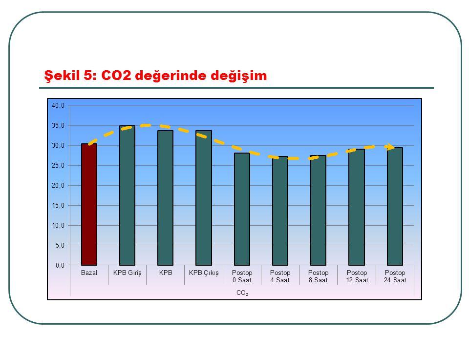 Şekil 5: CO2 değerinde değişim