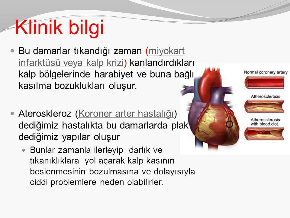 Klinik bilgi