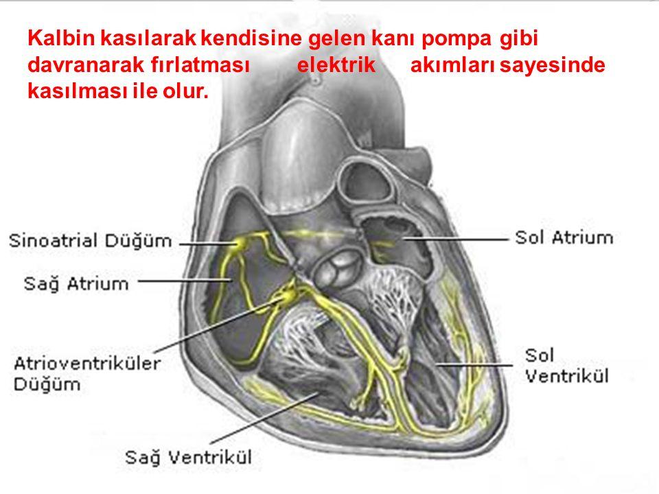 Kalbin kasılarak kendisine gelen kanı pompa gibi davranarak fırlatması elektrik akımları sayesinde kasılması ile olur.